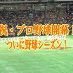 巨人2017年開幕戦勝利!開幕スタメンとカミネロ初登板の内容!