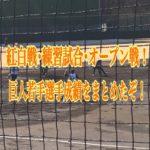 岡本、重信の成績は?巨人若手の紅白戦~オープン戦成績まとめ!!