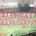 清宮幸太郎効果で、春季都大会がナイター開催!いい措置だが、他校に配慮せよ!