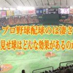 プロ野球配球の凄さ~大きく外に外すストレートはなぜ使わるのか?~