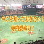 巨人寺内崇幸の歴史!スーパーサブ寺内のプロ野球人生を振り返る!