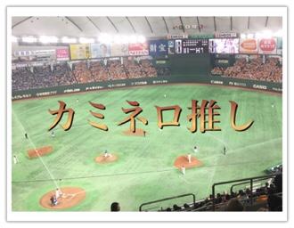 巨人の2018年推し選手を山口鉄也+カミネロにした理由を公開する!