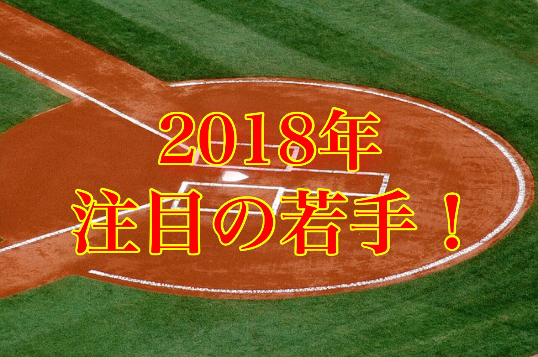 プロ野球キャンプインから注目しておきたい2018年期待の若手選手達を厳選!