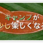 巨人宮崎春季キャンプの楽しい見方!初日と3日目のフリーバッティングを見比べよ!